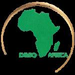 Diiso Africa www.diisoafrica.com